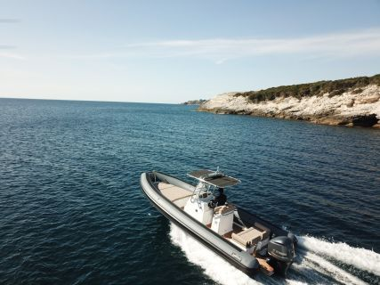 Sea Water Phantom 260